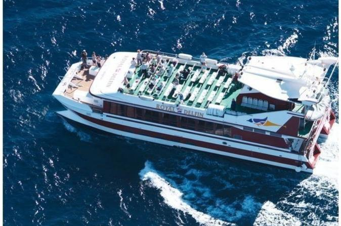 royal-dolphin-half-day-whale-watching-excursion-in-tenerife-in-costa-adeje-744732